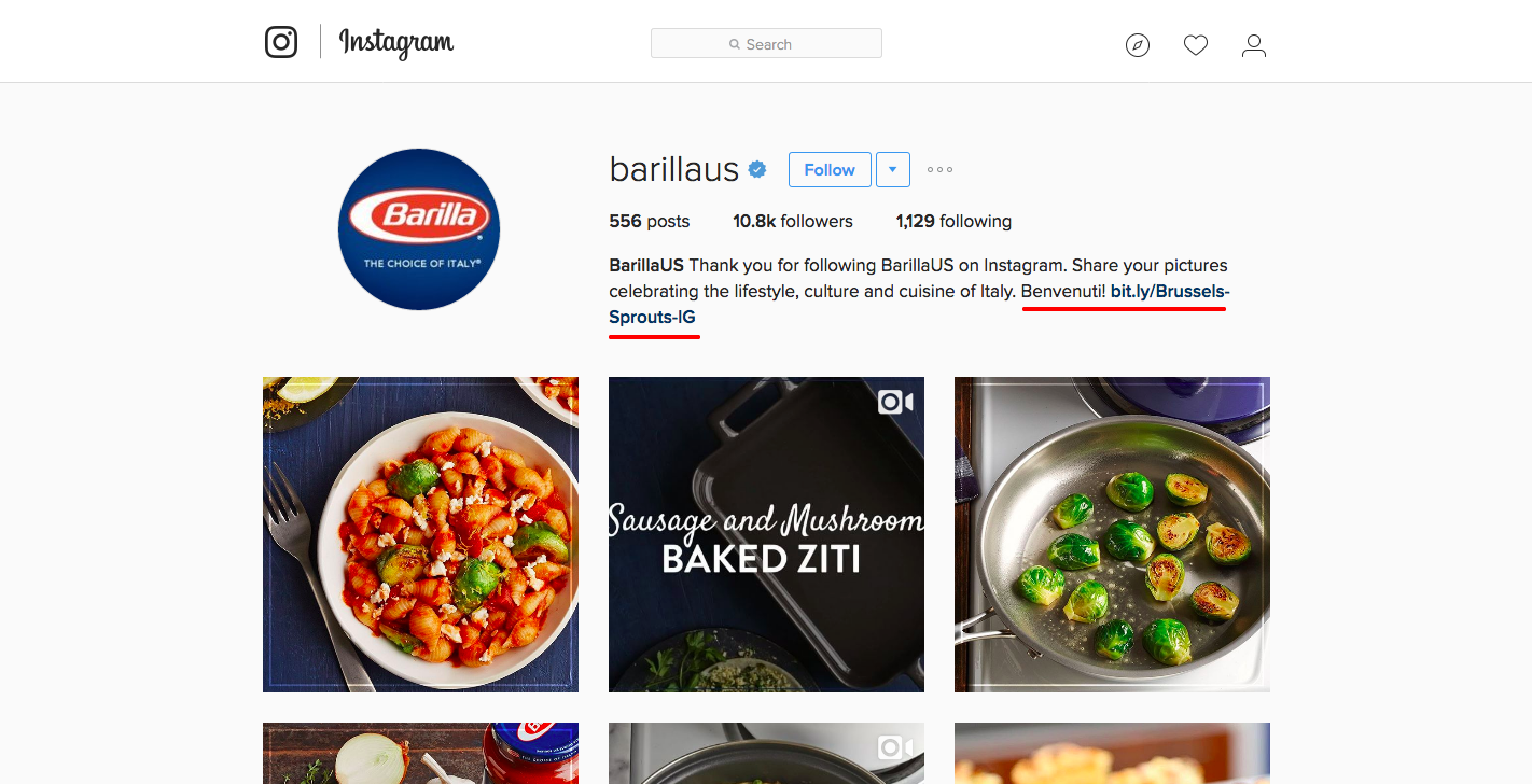 How to use instagram to drive traffic on your website your bio is the one place where your link is clickable right under your name and description at the top of your instagram page forumfinder Images
