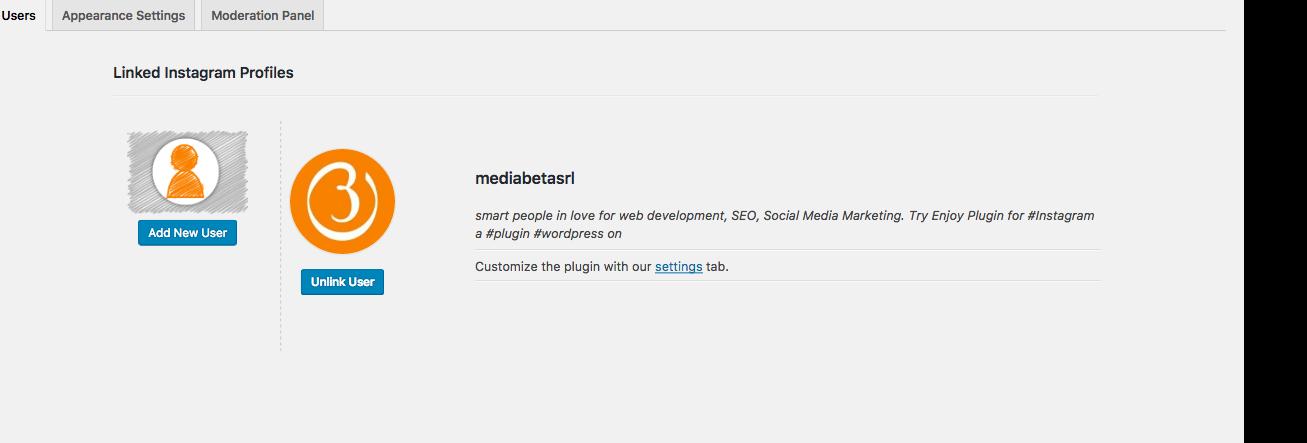 add-more-instagram-account-on-website