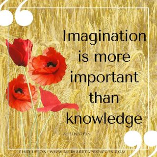 """""""Imagination is more important than knowledge"""" http://ow.ly/6rYl3043D3x #visionary #photographer #artist #wordpress #webdevelopment"""