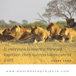 If everyone is moving forward together, then success takes care of itself #visionary #photographer #artist #webdevelopment #wordpress http://ow.ly/zIEy303UqNE