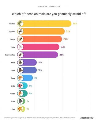 What are the most feared animals in the animal kingdom? ••• Source: statistic.ly Do you like our content? Be sure to tell your friends about us! ••• • • • > #travel #maps #map #world #travelling #adventure #infographic #geography #geo #aardrijkskunde #asia #europe #america ••• Check out theworldwegot for daily content of our beautiful earth! And check out news.nmore for daily geopolitical news!